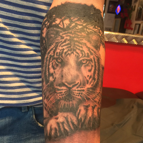 tiger black and grey reds tattoo colchester essex