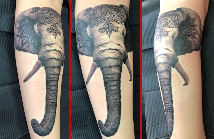 Tattoo, Best Tattoo, Colchester, Essex, Tattoo art, Tattoo Artist, Tattoos, Tattoo design, Top Tattoo, Black & grey Tattoo, reds tattoo, sonya trusty, essex tattoo, colchester, realism tattoo, tattoo ideas, elephant, realistic elephant, elephant tattoo, mandala, mandala tattoo
