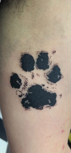 Tattoo, Best Tattoo, Colchester, Essex, Tattoo art, Tattoo Artist, Tattoos, Tattoo design, Top Tattoo, reds tattoo, anna kowacka, essex tattoo, colchester, tattoo ideas, paw print, paw print tattoo, memorial tattoo, pet, pet tattoo