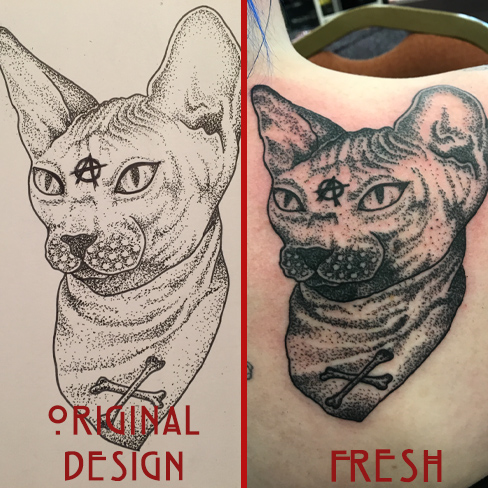 Tattoo, Best Tattoo, Colchester, Essex, Tattoo art, Tattoo Artist, Tattoos, Tattoo design, Top Tattoo, Black & grey Tattoo, reds tattoo, sonya trusty, essex tattoo, colchester, realism tattoo, sphinx cat, bald cat, cat, cat tattoo, anarchy, anarchy tattoo, shoulder tattoo