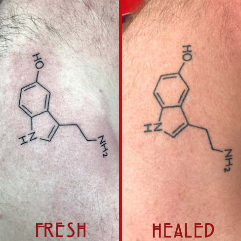 Tattoo, Best Tattoo, Colchester, Essex, Tattoo art, Tattoo Artist, Tattoos, Tattoo design, Top Tattoo, reds tattoo, anna kowacka, essex tattoo, colchester, tattoo ideas, linework, linework tattoo, outline, outline tattoo, science, science tattoo, fresh tattoo, healed tattoo, fresh vs healed