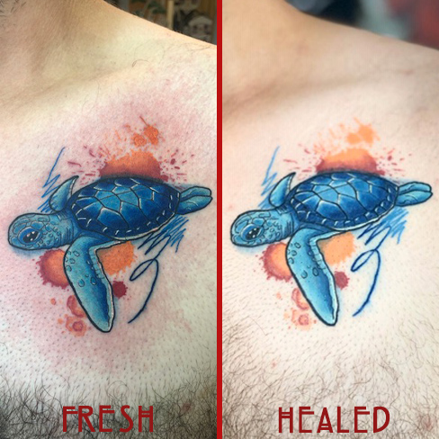 Tattoo, Best Tattoo, Colchester, Essex, Tattoo art, Tattoo Artist, Tattoos, Tattoo design, Top Tattoo, reds tattoo, anna kowacka, essex tattoo, colchester, tattoo ideas, watercolour, water colour, watercolour tattoo, turtle, turtle tattoo, sea life, fresh tattoo, healed tattoo, fresh vs healed