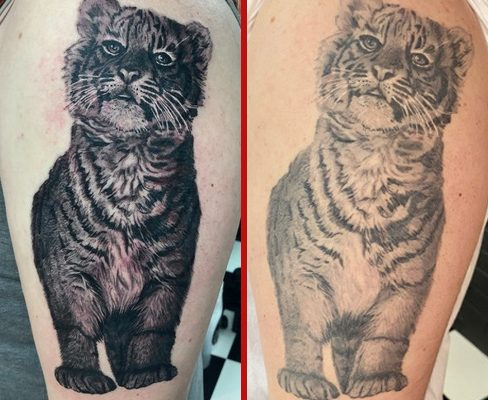 Tattoo, Best Tattoo, Colchester, Essex, Tattoo art, Tattoo Artist, Tattoos, Tattoo design, Top Tattoo, Black & grey Tattoo, reds tattoo, anna kowacka, essex tattoo, colchester, tattoo ideas, tiger, tiger tattoo, realistic tiger, realism tattoo, realism, realistic, fresh tattoo, healed tattoo, fresh vs healed